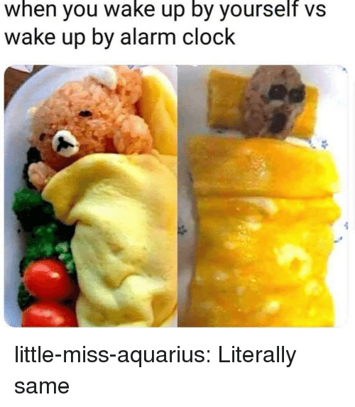 Clock, Target, and Tumblr: when you wake up by yourself vs  wake up by alarm clock little-miss-aquarius:  Literally same