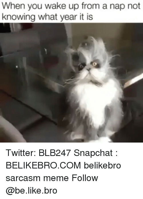 When You Wake Up From A Nap: When you wake up from a nap not  knowing what year it is Twitter: BLB247 Snapchat : BELIKEBRO.COM belikebro sarcasm meme Follow @be.like.bro