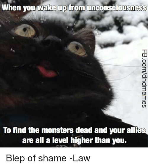 DnD, Monsters, and Shame: When you wake up from unconsciousness  3  To find the monsters dead and your allies  are all a level higher than you. Blep of shame  -Law