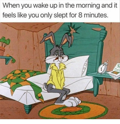 8 Minutes: When you wake up in the morning and it  feels like you only slept for 8 minutes.