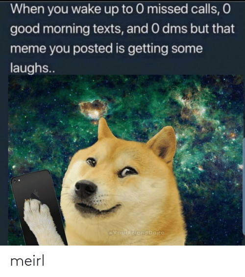 Doge: When you wake up to 0 missed calls, O  good morning texts, and 0 dms but that  meme you posted is getting some  laughs..  @YourFriend Doge meirl