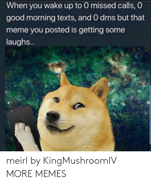 Doge: When you wake up to 0 missed calls, O  good morning texts, and 0 dms but that  meme you posted is getting some  laughs..  @YourFriend Doge meirl by KingMushroomIV MORE MEMES