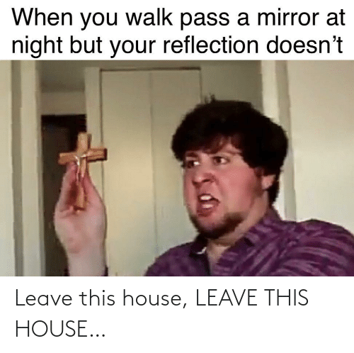 Mirror: When you walk pass a mirror at  night but your reflection doesn't Leave this house, LEAVE THIS HOUSE…