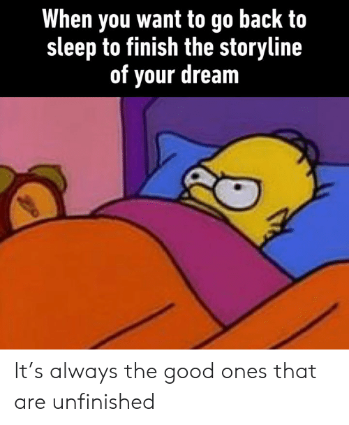 Dank, Good, and Sleep: When you want to go back to  sleep to finish the storyline  of your dream It's always the good ones that are unfinished
