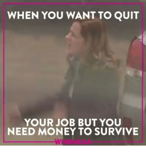 survivalism: WHEN YOU WANT TO QUIT  YOUR JOB BUT YOU  NEED MONEY TO SURVIVE