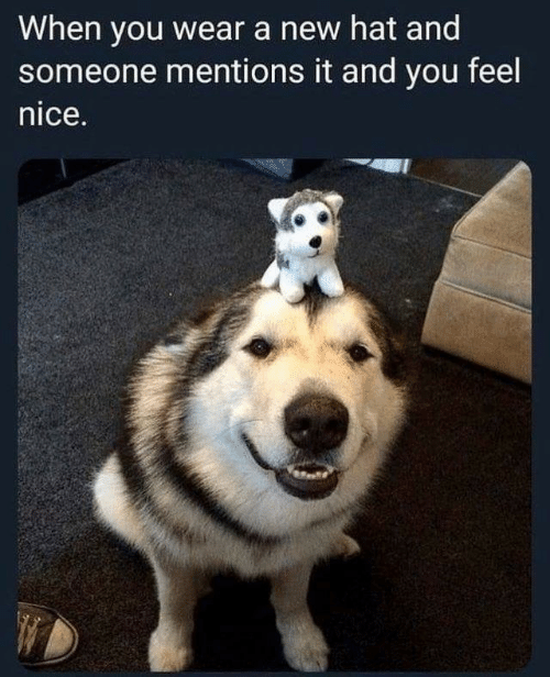 Nice, New, and You: When you wear a new hat and  someone mentions it and you feel  nice.