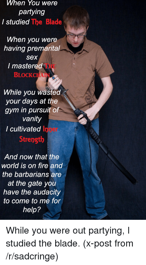 Sadcringe: When You were  partying  I studied  The Blade  When you were  having premarital  Sex  I mastered  BLOCK CHAI  While you wasted  your days at the  gym in pursuit of  vanity  I cultivated  Strength  And now that the  world is on fire and  the barbarians are  at the gate you  have the audacity  to come to me for  help? While you were out partying, I studied the blade. (x-post from /r/sadcringe)