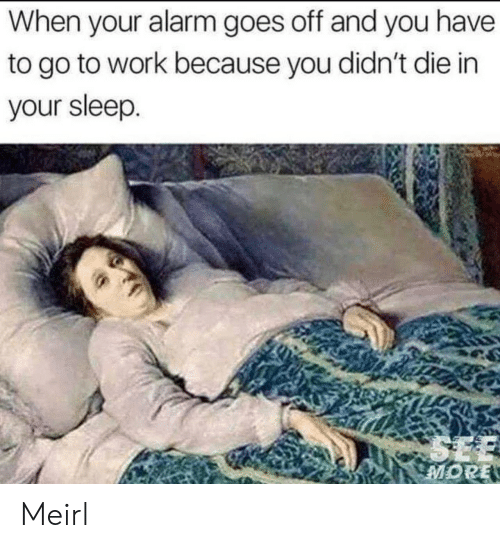 Work, Alarm, and Sleep: When your alarm goes off and you have  to go to work because you didn't die in  your sleep Meirl