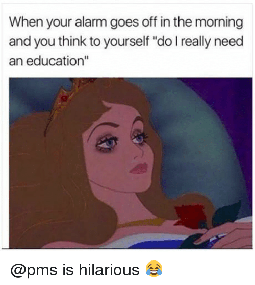 """An Education: When your alarm goes off in the morning  and you think to yourself """"do I really need  an education"""" @pms is hilarious 😂"""
