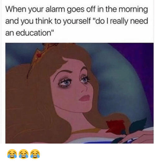 """An Education: When your alarm goes off in the morning  and you think to yourself """"do I really need  an education"""" 😂😂😂"""