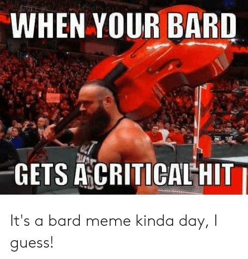 bard: WHEN YOUR BARD  GETS ACRITICAL HIT It's a bard meme kinda day, I guess!