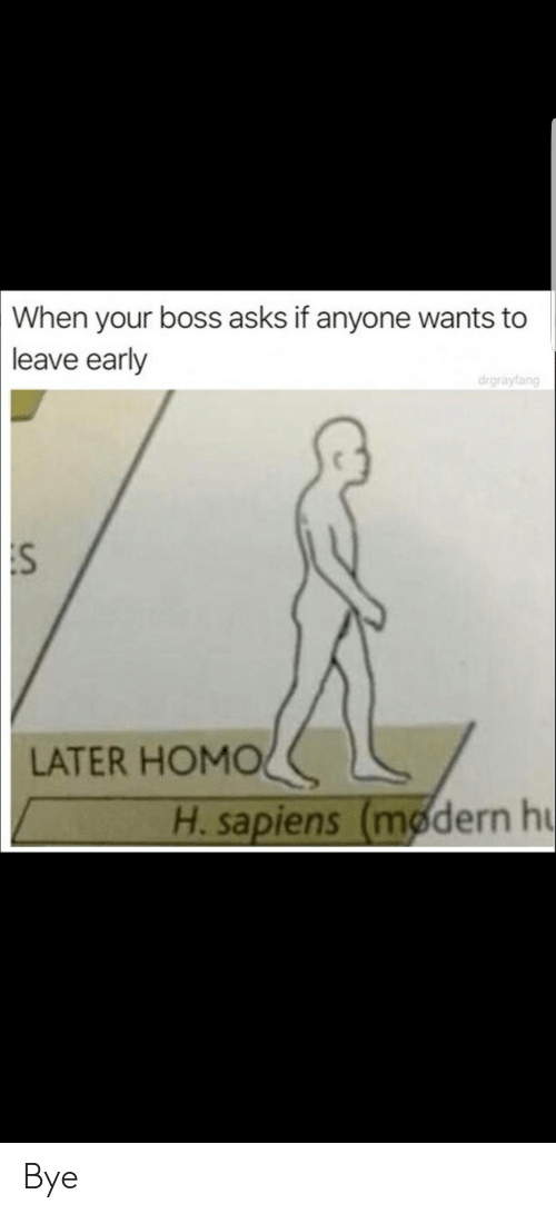 Leave Early: When  your boss asks if anyone wants to  leave early  drgrayfang  :S  LATER HOMOく  H. sapiens (modern h Bye