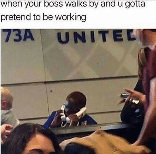 Working, Boss, and Pretend: when your boss walks by andu gotta  pretend to be working  73A UNITEL