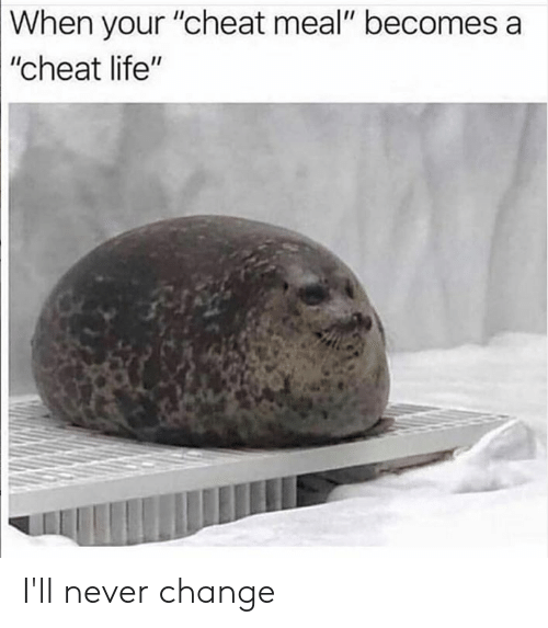 """Dank, Life, and Change: When your """"cheat meal"""" becomes a  """"cheat life"""" I'll never change"""