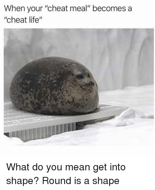 """Life, Mean, and Girl Memes: When your """"cheat meal"""" becomes a  """"cheat life"""" What do you mean get into shape? Round is a shape"""
