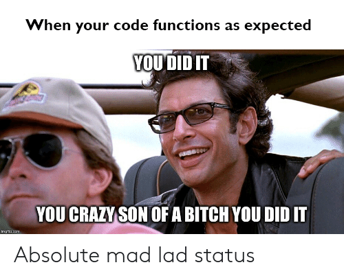 Bitch, Crazy, and Mad: When your code functions as expected  YOU DID IT  YOU CRAZY SON OF A BITCH YOU DID IT  Inglaam Absolute mad lad status
