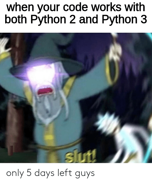 python: when your code works with  both Python 2 and Python 3  slut! only 5 days left guys