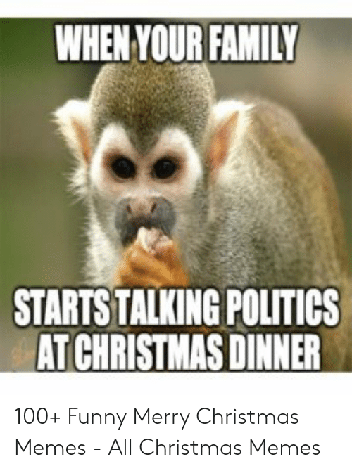 Funny Merry Christmas Memes: WHEN YOUR FAMILY  STARTS TALKING POLITICS  AT CHRISTMAS DINNER 100+ Funny Merry Christmas Memes - All Christmas Memes