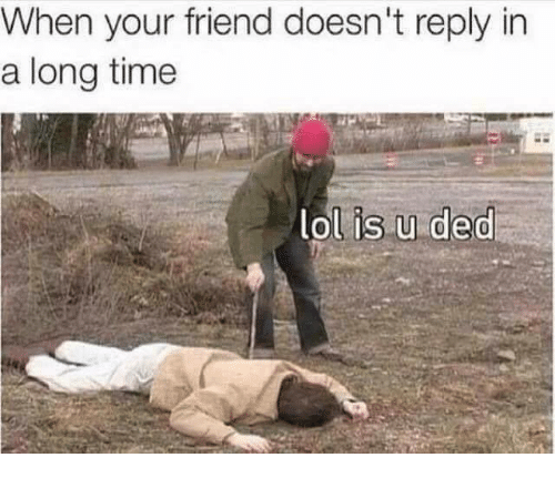 Memes, 🤖, and Friend: When your friend doesn't reply in  a longtime  ol is u ded