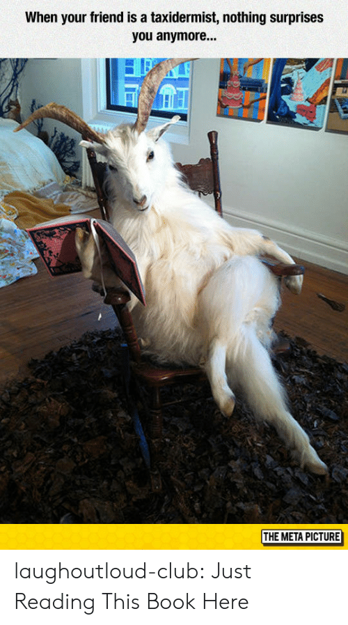Club, Tumblr, and Blog: When your friend is a taxidermist, nothing surprises  you anymore...  THE META PICTURE laughoutloud-club:  Just Reading This Book Here