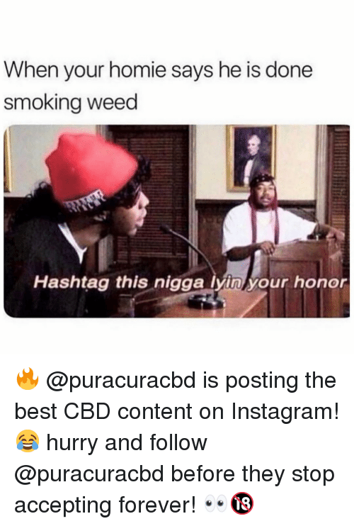 Funny, Homie, and Instagram: When your homie says he is done  smokina weed  Hashtag this nigga lyin your honor 🔥 @puracuracbd is posting the best CBD content on Instagram! 😂 hurry and follow @puracuracbd before they stop accepting forever! 👀🔞