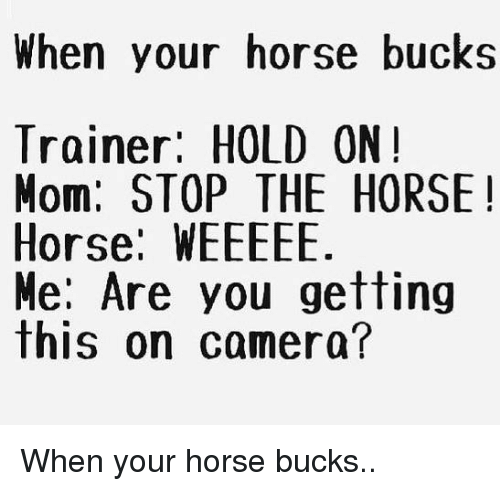 Weeeee: When your horse bucks  Trainer: HOLD ON!  Mom: STOP THE HORSE  Horse: WEEEEE  Me: Are you getting  this on camera? When your horse bucks..