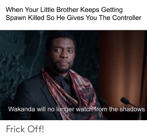 the shadows: When Your Little Brother Keeps Getting  Spawn Killed So He Gives You The Controller  Wakanda vwill no londer watch friom the shadows Frick Off!