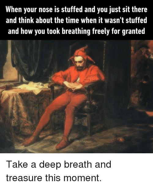 Dank, Time, and 🤖: When your nose is stuffed and you just sit there  and think about the time when it wasn't stuffed  and how you took breathing freely for granted Take a deep breath and treasure this moment.