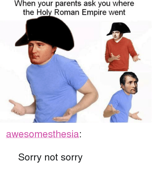 """holy roman empire: When your parents ask you where  the Holy Roman Empire went <p><a href=""""http://awesomesthesia.tumblr.com/post/173547470809/sorry-not-sorry"""" class=""""tumblr_blog"""">awesomesthesia</a>:</p>  <blockquote><p>Sorry not sorry</p></blockquote>"""