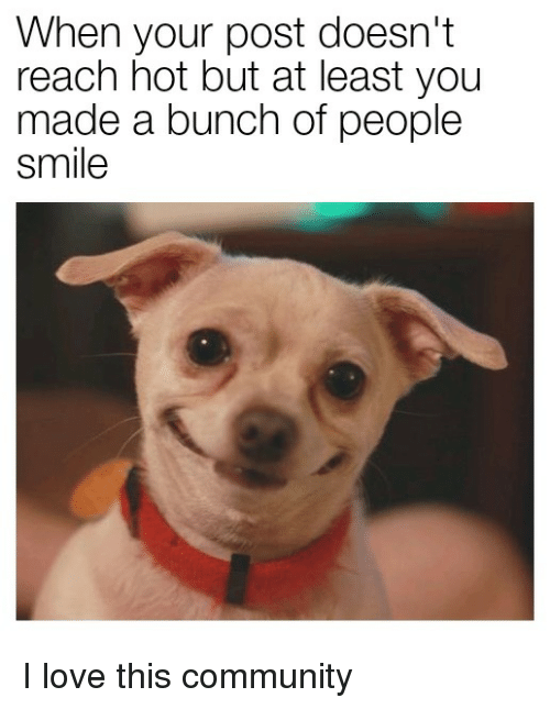 Community, Love, and Smile: When your post doesn't  reach hot but at least you  made a bunch of people  smile I love this community