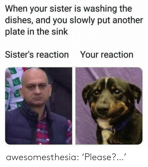 Slowly: When your sister is washing the  dishes, and you slowly put another  plate in the sink  Sister's reaction  Your reaction awesomesthesia:  'Please?…'
