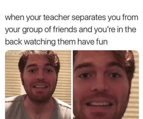 Friends, Teacher, and Back: when your teacher separates you from  your group of friends and you're in the  back watching them have fun  Shanelovesmemes