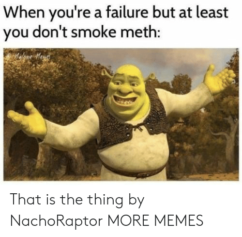 Dank, Memes, and Target: When you're a failure but at least  you don't smoke meth: That is the thing by NachoRaptor MORE MEMES
