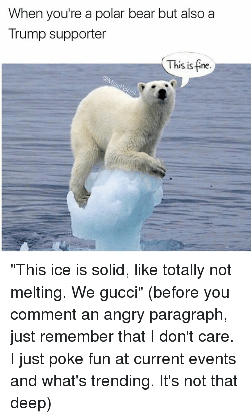"""Pokeing: When you're a polar bear but also a  Trump supporter  This is fine """"This ice is solid, like totally not melting. We gucci"""" (before you comment an angry paragraph, just remember that I don't care. I just poke fun at current events and what's trending. It's not that deep)"""