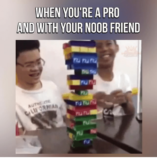 Memes, Pro, and 🤖: WHEN YOU'RE A PRO  AND WITH YOUR NOOB FRIEND  ru ru