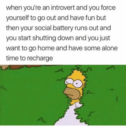 Being Alone, Introvert, and Home: when you're an introvert and you force  yourself to go out and have fun but  then your social battery runs out and  you start shutting down and you just  want to go home and have some alone  time to recharge  A-  n,
