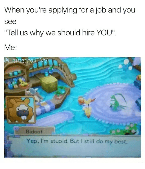 """Best, Job, and Why: When you're applying for a job and you  See  """"Tell us why we should hire YOU""""  Me  Bidoof  Yep, I'm stupid. But I still do my best."""