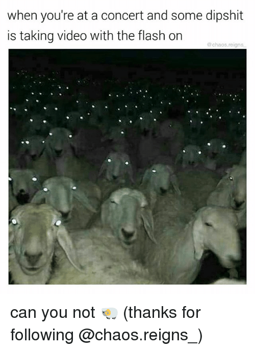Memes, The Flash, and Video: when you're at a concert and some dipshit  is taking video with the flash on  @chaos.reigns can you not 🐏 (thanks for following @chaos.reigns_)
