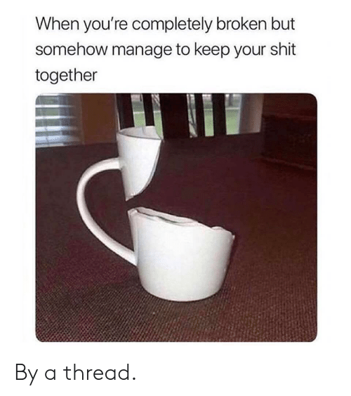 Shit, Youre, and Together: When you're completely broken but  somehow manage to keep your shit  together By a thread.
