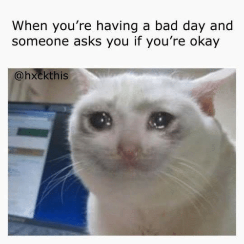Bad, Bad Day, and Okay: When you're having a bad day and  someone asks you if you're okay  @hxckthis