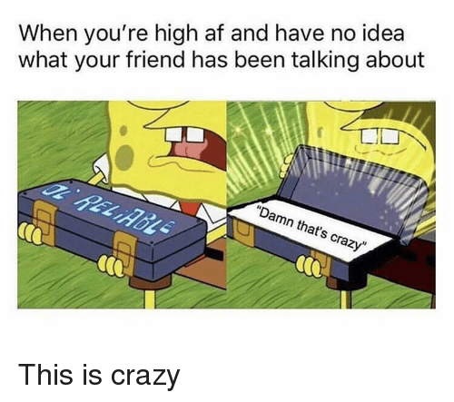 """Af, Crazy, and High AF: When you're high af and have no idea  what your friend has been talking about  """"Damn that's crazy"""" This is crazy"""
