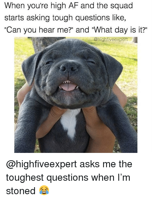 """Af, Squad, and Weed: When youre high AF and the squad  starts asking tough questions like,  """"Can you hear me?"""" and """"What day is it?""""  @highfiveexpert @highfiveexpert asks me the toughest questions when I'm stoned 😂"""