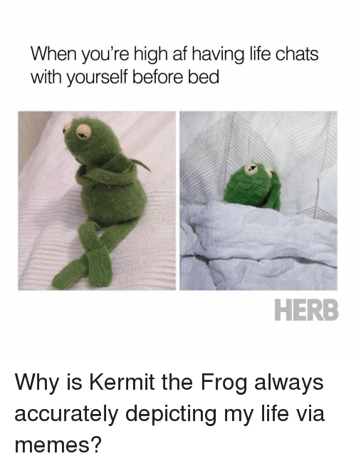 Kermit the Frog: When you're high af having life chats  with yourself before bed  HERB Why is Kermit the Frog always accurately depicting my life via memes?