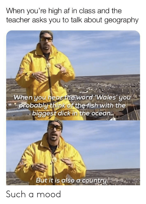 High AF: When you're high af in class and the  teacher asks you to talk about geography  When you hearheword Wales' you  probably think of the fish with the  biggest dick in the ocean.  But it is also a country Such a mood