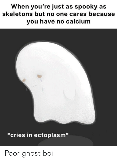no one cares: When you're just as spooky as  skeletons but no one cares because  you have no calcium  *cries in ectoplasm Poor ghost boi
