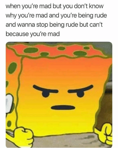 Memes, Rude, and Mad: when you're mad but you don't know  why you're mad and you're being rude  and wanna stop being rude but can't  because you're mad