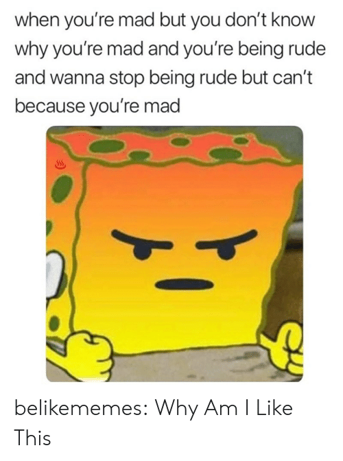 Rude, Tumblr, and Blog: when you're mad but you don't know  why you're mad and you're being rude  and wanna stop being rude but can't  because you're mad belikememes:  Why Am I Like This