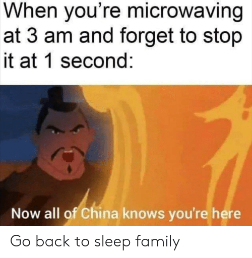 Now All Of China Knows: When you're microwaving  at 3 am and forget to stop  it at 1 second:  Now all of China knows you're here Go back to sleep family