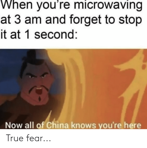 Now All Of China Knows Youre Here: When you're microwaving  at 3 am and forget to stop  it at 1 second:  Now all of China knows you're here True fear...