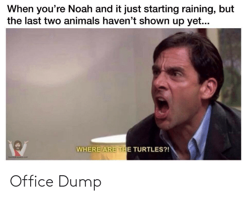 Shown: When you're Noah and it just starting raining, but  the last two animals haven't shown up yet...  WHERE ARE THE TURTLES?!  memestorjesus.com Office Dump